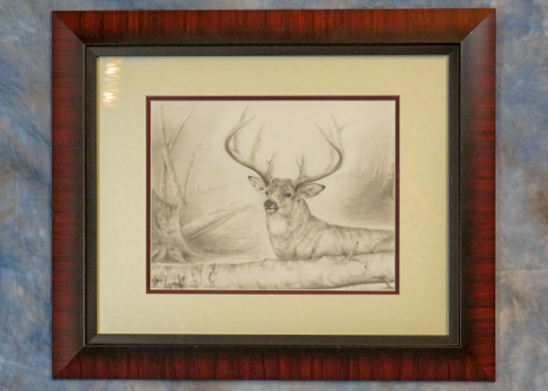Pencil sketch of a whitetail deer in a frame